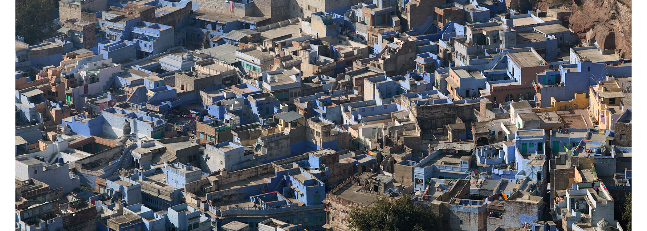 Paul Grundy. Jodhpur